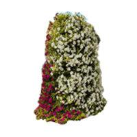 bloemtorens-nornet-urban-support