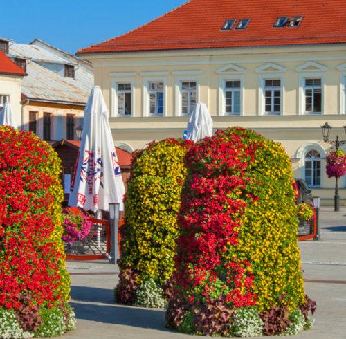 bloemtorens-stad-dorp-nornet
