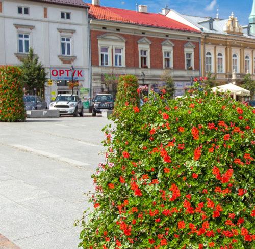 bloemtorens-stad-dorp-nornet5